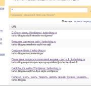 Поисковые запросы на сайт — часть 2